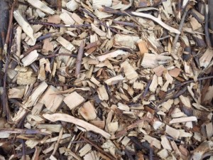 basic wood chip